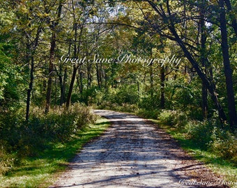 A Shaded Path, Photography, Home Decor