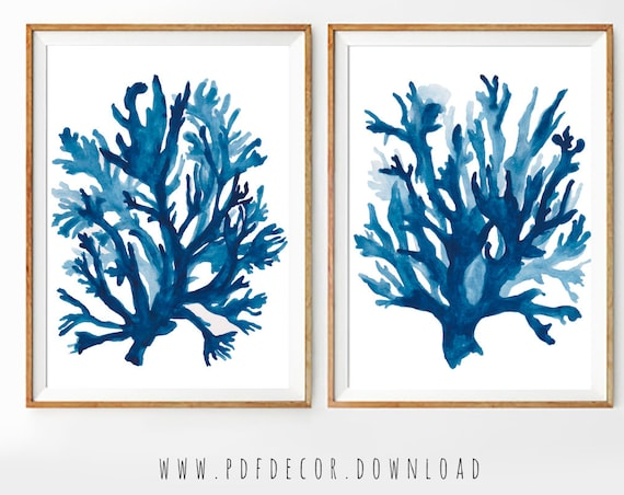 Coastal Print Set, Set of 2 blue wall art, Seaweed Print, Seaweed Wall Decal, Coastal Decor, Coastal wall Art, Set of 2 prints, Set of 2 Art