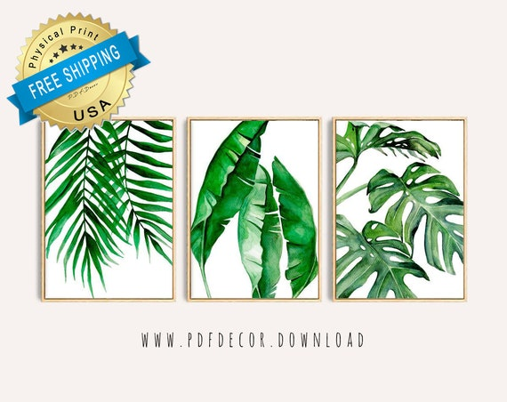 Set of 3 Large Art Prints. Botanical leaf images. Photo paper poster size prints semi-gloss paper