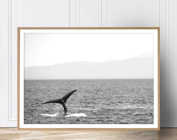 Whale Tail Print, Coastal Decor, Beach Print, Black White Photography,  Wall Art, Ocean Water, Modern Art, Printable, Instant Download, Art