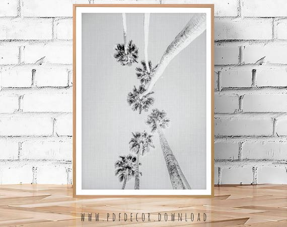 Palm Tree Prints, Palm Tree Wall art, Black white Prints, Black White Photo, Black White Art, Wall art, Digital Download, Black White Poster