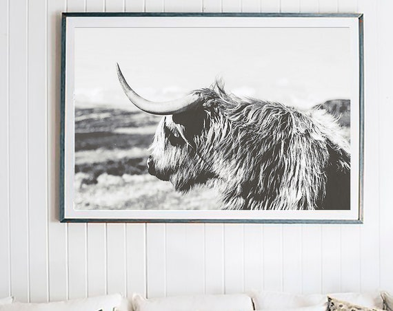 Buffalo Print, Bison Print, Large Wall Art Print, Animal Prints, Animal Poster Art, Living Room Art, Old Photo Effect, Farmhouse Decor