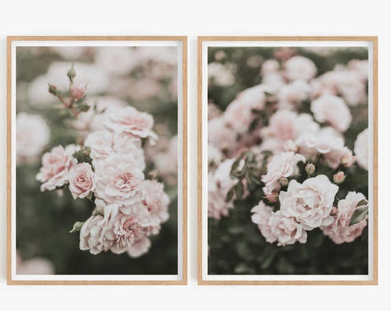 Printable Roses, Bedroom Wall Decor, Roses Art Print, Pink Floral, Digital Download Poster, Flower Photography, Roses Print,Set of 2 Prints