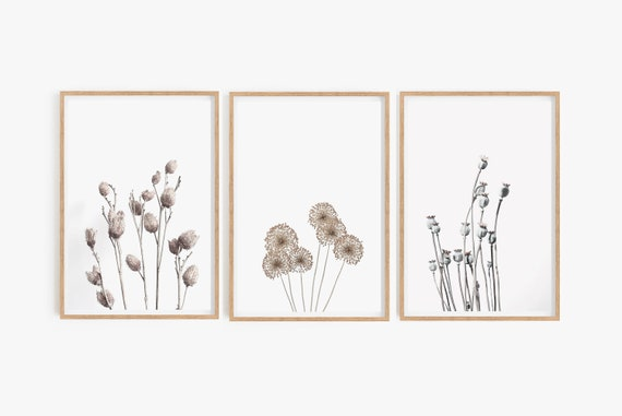 Wall Gallery Set of 3 Prints, Botanical Wall Prints, Set of 3 Wall art, Botanical Prints, Poster Prints, Digital Prints, Art Prints,Wall Art