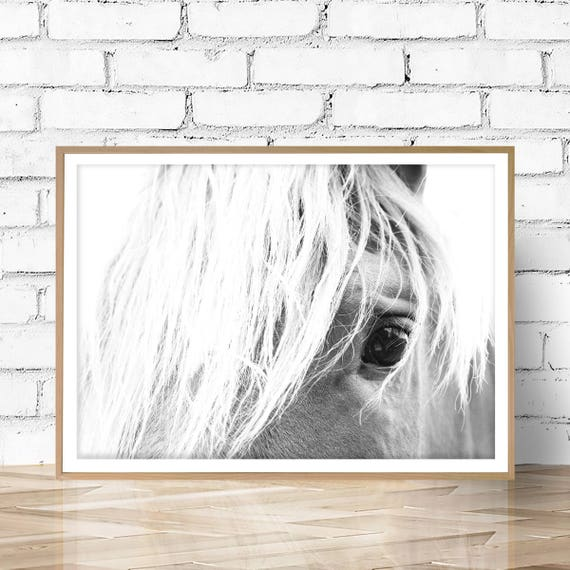 Horse Print, Large Photo, Wall Art, Horse Photography, Art Print, Prints, Digital Download, Horse, Printable Art, Horse Art, Art, JPEG, PDF