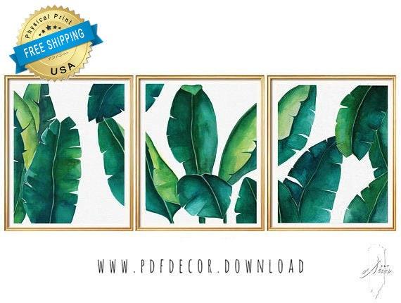 Set of 3 Large Art Prints. Botanical leaf images on a canvas effect. Photo paper poster size prints