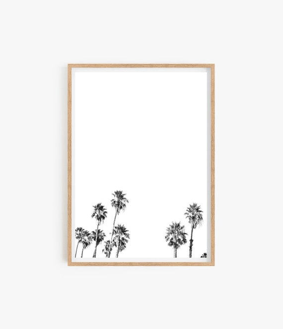 Black and White Print Palm Tree Print Minimalist print Wall art Living Room Beach Decor Home Decor Beach Photo Black and White Poster Art
