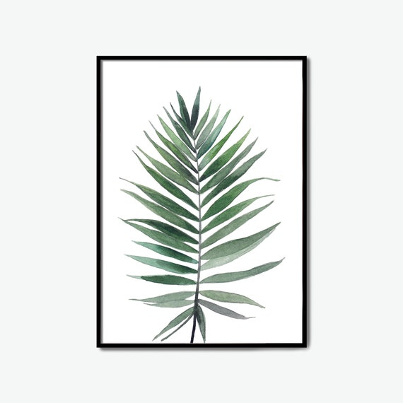 tropical, tropical plants, tropical garden, pictures to print, print sizes, print pictures, leaf printing, monstera leaf, green leaf art