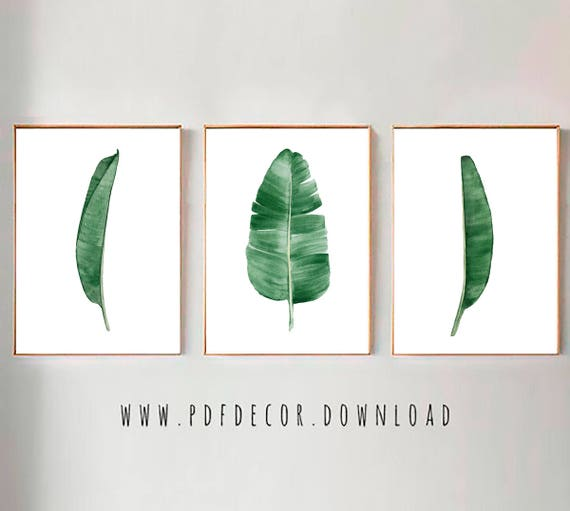 Set of 3 Leaf Prints, Set of 3 leaves  prints, Banana leaf Prints, Tropical Leaves Print Set, Set of 3 Wall Art, Tropical Prints, Set of 3
