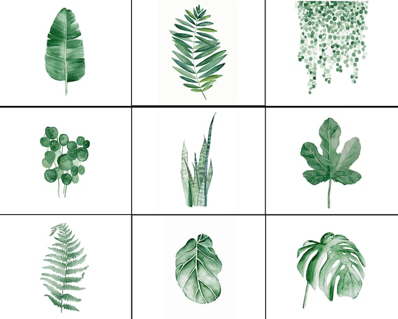 Set of 9 Watercolor Tropical Leaves. CUSTOM ORDER
