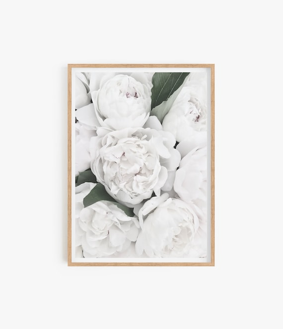 White Peony Print Peony Poster Living Room Decor Floral poster Floral decor Bedroom wall Art Peony Wall Art Botanical Print White Flowers