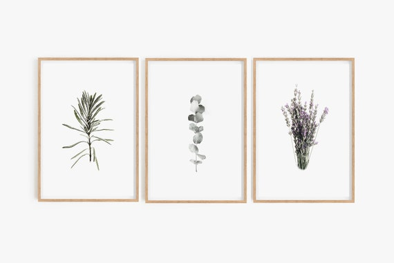 Set of 3 Prints, Digital Prints, Botanical Prints, Farmhouse Prints, Farmhouse Wall Art, Botanical Wall Art, Botanical Posters, Bathroom Art