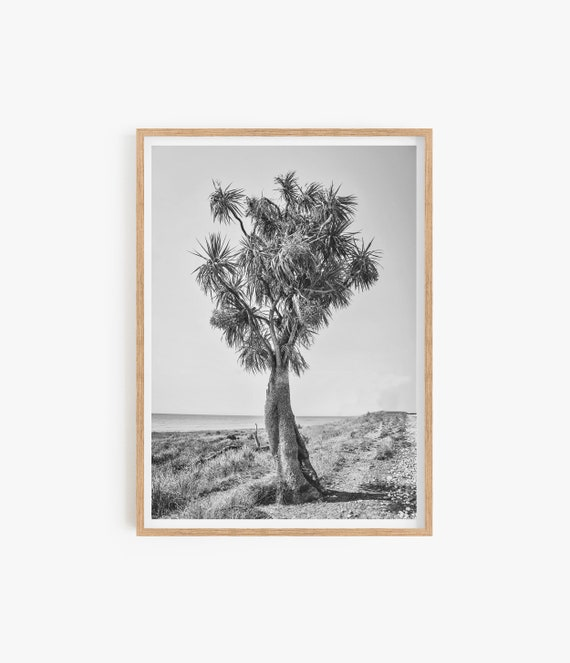 Desert Prints Joshua Tree Tropical prints Black and White Print Tree Wall art Beach Prints Coastal Decor Desert Wall art Home Decor Prints