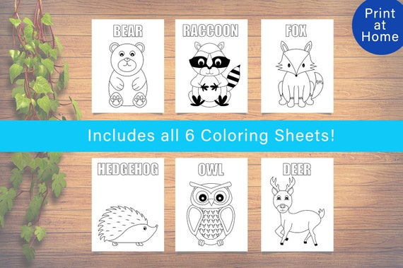 6 Woodland Animals Themed Coloring Pages Woodland Creatures