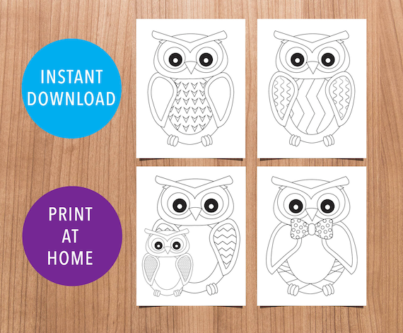 4 Owl Coloring Sheets Size 8.5x11 and A4