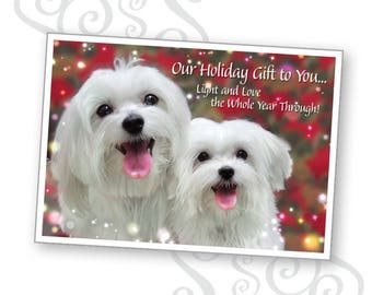 Dog holiday card etsy our holiday gift to you greeting card featuring smiling maltese dogs m4hsunfo