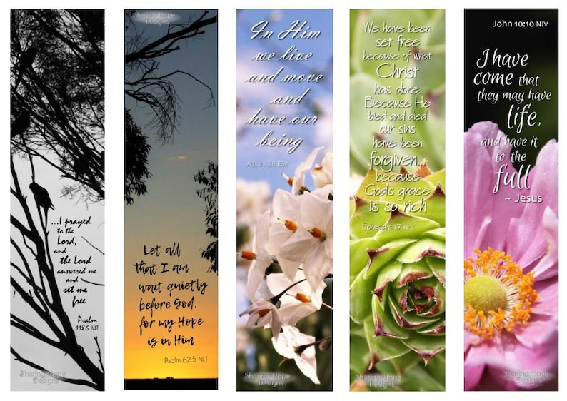 photo regarding Who I Am in Christ Printable Bookmark known as Printable Bible Verse Picture Bookmark Fastened x5, Succulent Flower Bible Magazine Christian Ebook Partner Present Inspiring Female Moms Working day Obtain