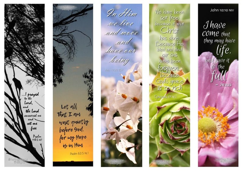 graphic relating to Who I Am in Christ Printable Bookmark known as Printable Bible Verse Photograph Bookmark Fixed x5, Succulent Flower Bible Magazine Christian Ebook Associate Reward Inspiring Female Moms Working day Down load