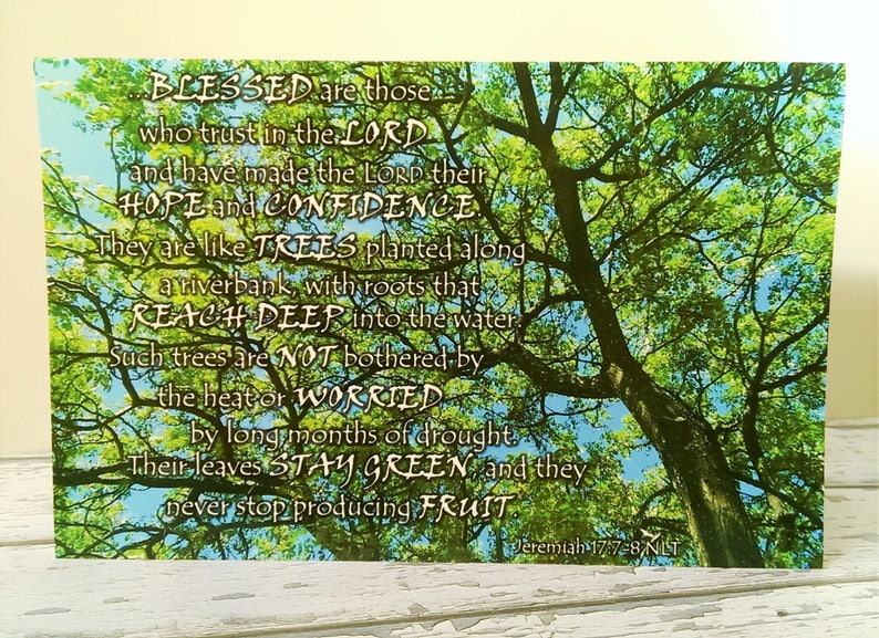 Bible Verse Greeting Card Set x2 Blessed Tree Jeremiah 17:7-8 Christian  card blank note card Scripture birthday card thank you card