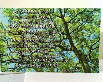 Blessed Bible Quote Postcard Set x5, Cedar Tree Print, Christian Scripture Postcard Set, Religious Photo Card, Bible Verse Jeremiah 17:7-8