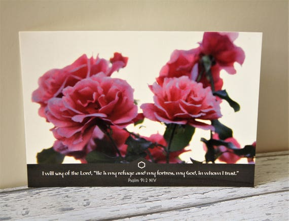 Bible Verse Postcard Set X5 Pink Roses Psalm 912 Scripture