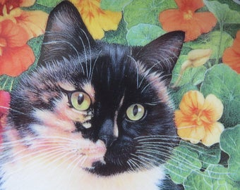 Cat collectors plate by Lesley Anne Ivory -  ' Motley in the Nasturtiums'.