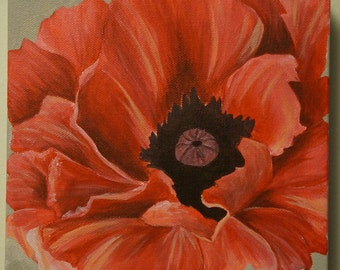 Poppy Painting Acrylic Painting 8X8 Galley Canvas