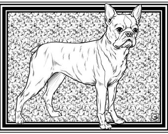 Downloadable High Resolution Coloring Page 4 DOGS Series