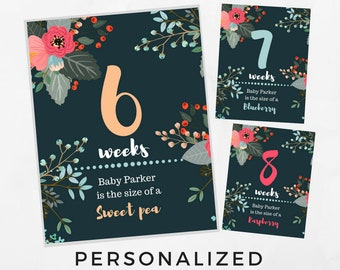 Pregnancy Weekly Sign, Maternity Photo Prop, Baby Bump Sign, Pregnancy Week By Week, Pregnancy Countdown, Printable Weeks 6-40.