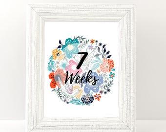 Pregnancy Week by Week, Weekly pregnancy, Pregnancy Milestone, Pregnancy countdown, Photo Prop, Weeks 6-40 - Girl & Boy signs - Printable.