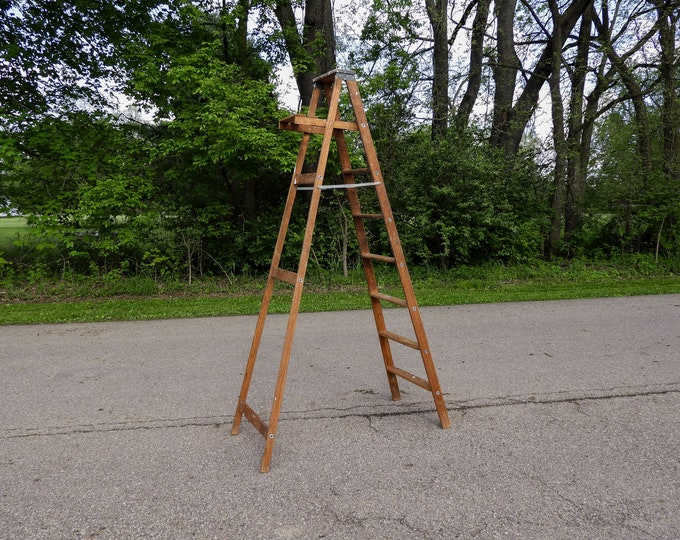 Vintage Step Ladder, Wood Archbold, Wooden Rack, 8 Ft 225#, Painters Tool, Brown w Colored Spots, Upper Shelf, Quilt Display, Home Decor