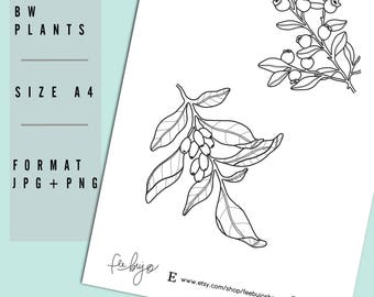 Black and White Plants Printable - Printable Planner Stickers, Printable stickers, Daily Scrapbooking