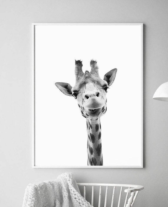 Jirafa de impresión de arte grabados estampados de animales   Etsy