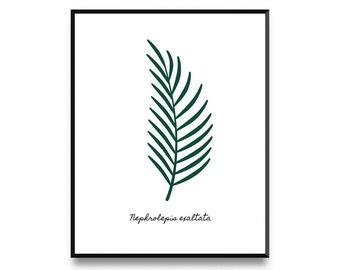 Fern leaf print, fern print, fern wall art, leaf art print, affiche scandinave, botanical leaf art, printable leaf, printable art, art print