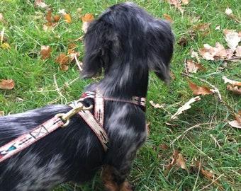 Native Maroon Thin Dog harness