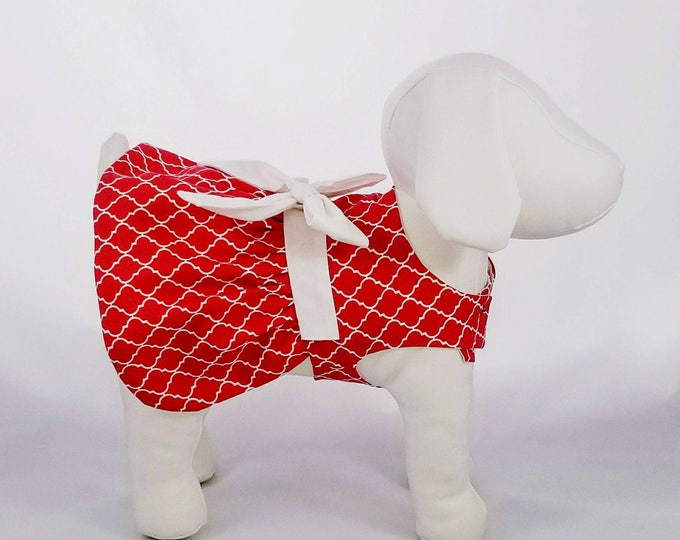 Featured listing image: Red with White Eaton Squares Dog Dress