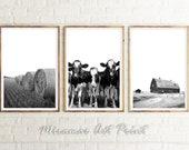 Farmhouse Set Of 3, Farmhouse Animal, Barn Photography, Harvest Set, Kitchen Set of 3, Farm Set Of 3, Farming Set Of 3, Country Prints Decor