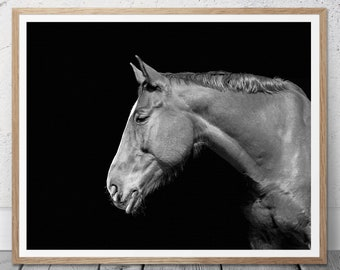 Horse Poster, Horse Home Decor, Black and White, Digital Download, Black White Print, Printable Art, Horse Photo Print, Modern Horse