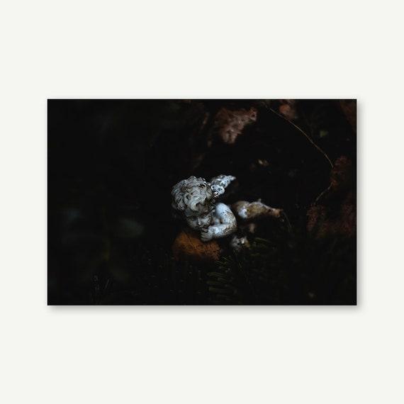 "Wandbild ""Little Angel""   Fotografie auf Leinwand, Acrylglas, Alu-Dibond"