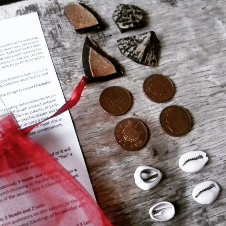 Obi Divination Set - fortune teller tarot witch santeria lukumi african