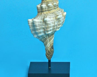 Center Post Base- Bendable Display Stand for shells and other hollow objects- 5 inches tall