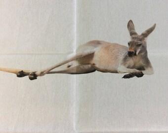 Lazy Skippy the Kangaroo Teatowel