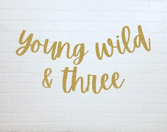 Young Wild And Three Banner   3rd Birthday Decorations   Wild Child Birthday   3rd Birthday Sign