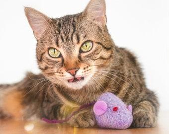 Catnip Toy. Lilac Mouse. Catnip Mouse. Purple Cat Toy. Organic Cat Toy. Purple Mouse. Organic Catnip Toy. Wool Felt. Cat Toy. Felt Mouse