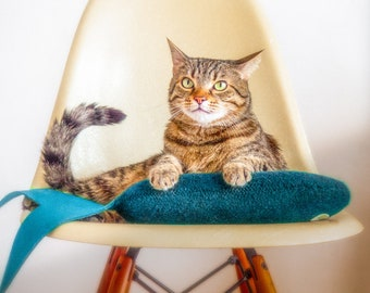 Jumbo Catnip Fish. Cat Toys. Teal Blue Fish. Organic Catnip. Catnip Toy. Luxury Cat Toy. Catnip Kicker. Large Kicker. Toys For Cats.