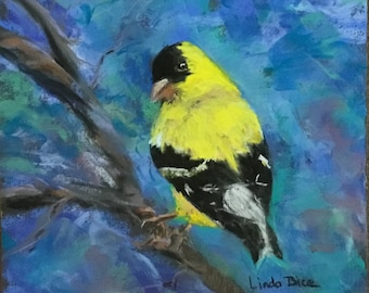Goldfinch pastel painting