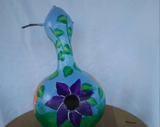 birdhouse Gourds, Hand painted, home grown