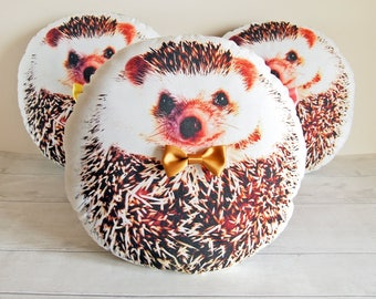Hedgehog pillow, Cute hedgehog gifts, Hedgehog stuffed animal, Woodland gift, Woodland nursery gift, Hedgehog plush, Mothers day gift, GOLD
