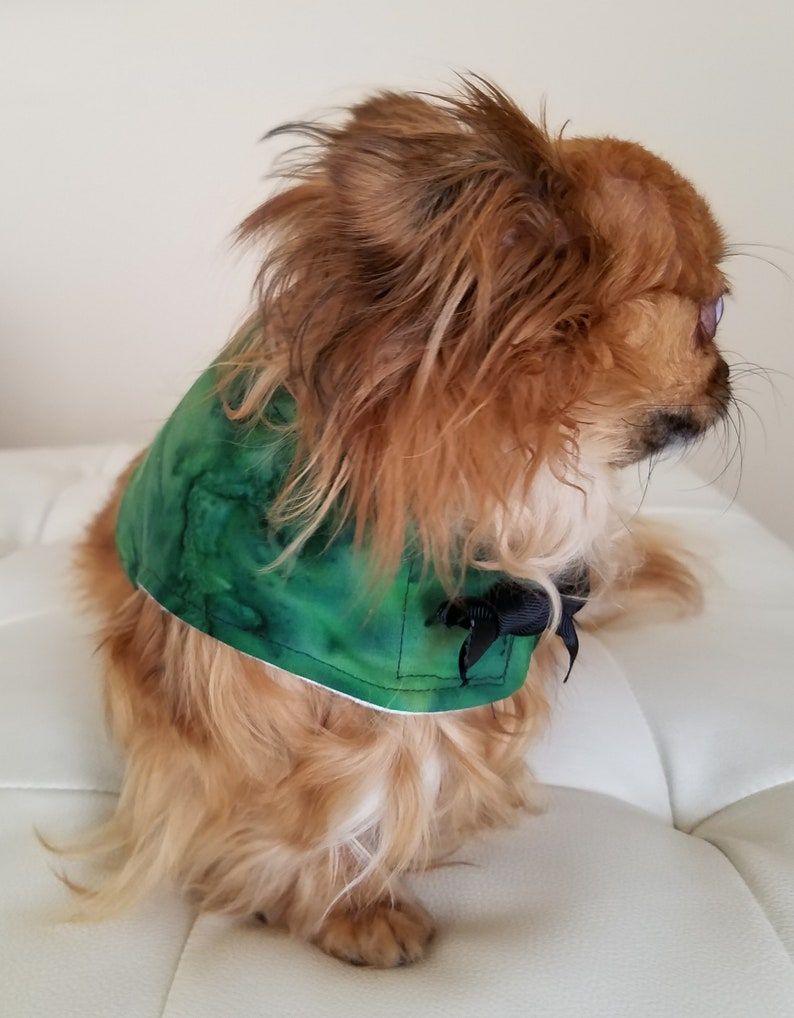 Dog Vest Harness ~Dapper Dog ~Puppy ~Pet Apparel ~Cute Dog Clothes ~Couture Pet ~Dog Outfit ~Boy  Dog Clothes ~Fall ~Matching Dog Outfits