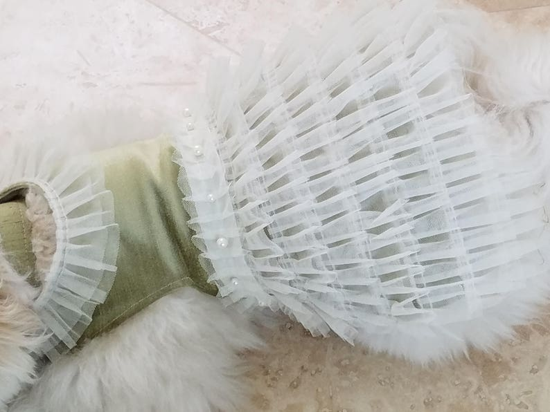 Exquisite Dog Dress ~Wedding ~Black Tie ~Special Occasion ~Pet Outfit ~Small Puppy ~Fancy Dog ~Formal Dog Dress ~Dog Clothes ~Lace ~Pearls